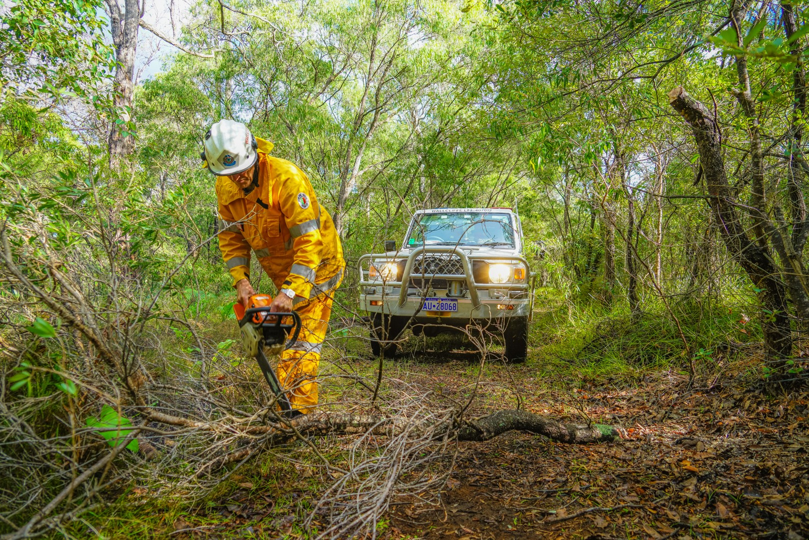 Wallcliffe Volunteer Bush Fire Brigade demonstrating the need for chainsaws and chainsaw training under the ESL