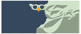 Wise Eyes Booking Logo