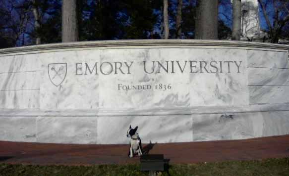 Emory University - cropped
