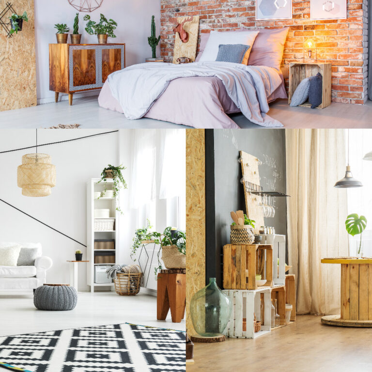 5 Items Every Adult Should Have in Their Home