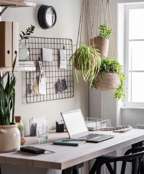 辦公室的綠生活提案!上班族也能優雅實踐環保生活