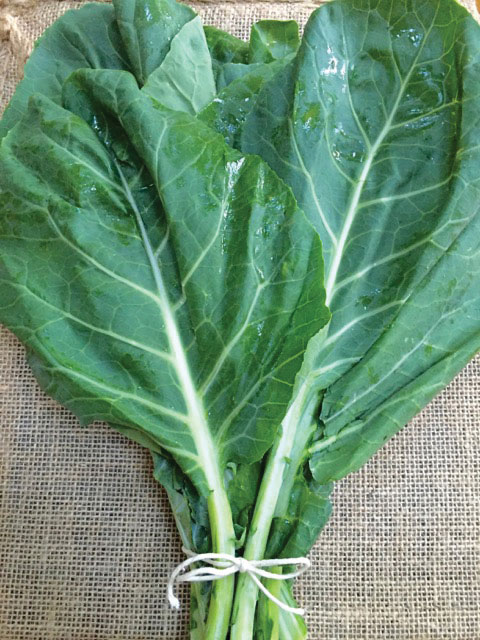 The Colorful Side of Collards