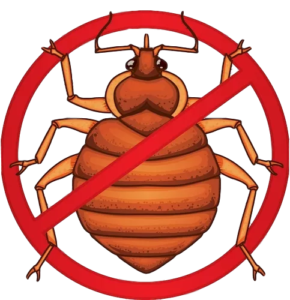 bed bugs_clipped_rev_2