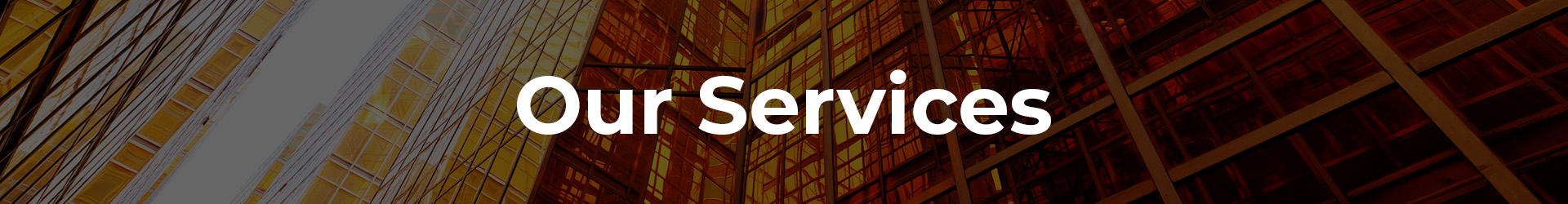 Softype Inc : Our Service