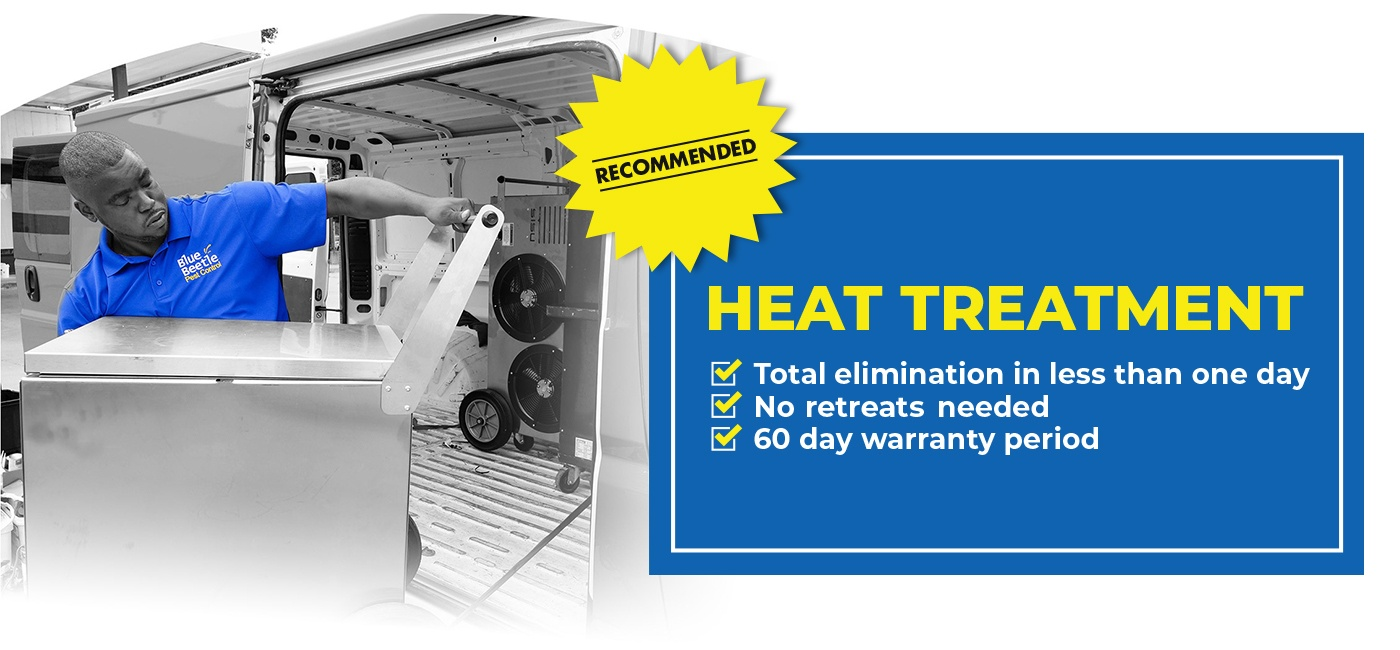 Bed bug heat treatment banner