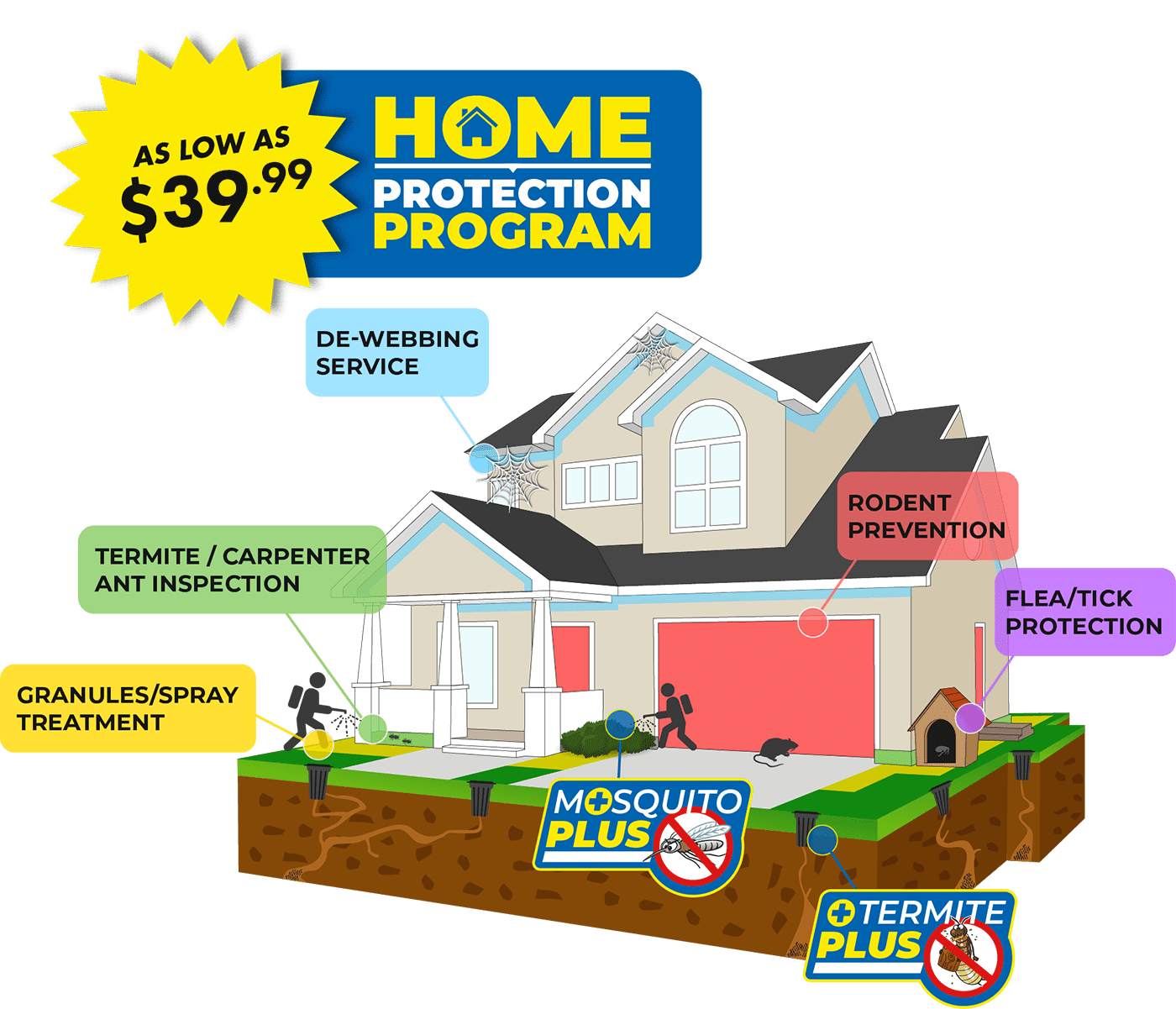 Home illustration of Home Protection Program Blue Beetle Pest Control