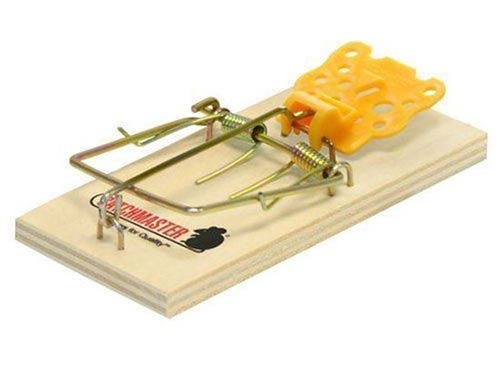 Mouse snap trap for DIY mice solutions - Blue Beetle Pest Control