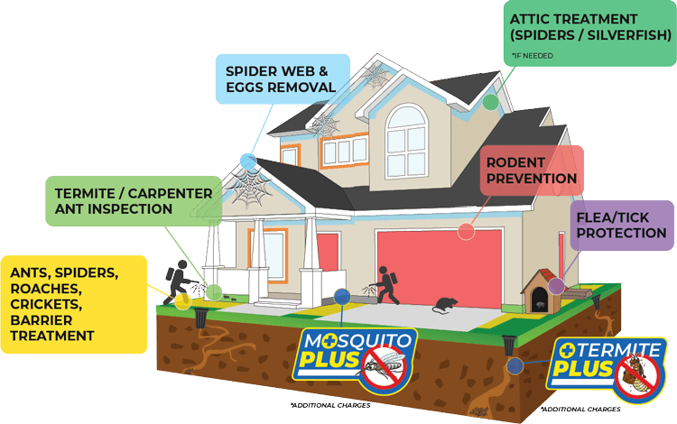 premium happy home program covers attic treatment, rodent, flea, tick, ants, spiders, roaches, cricket prevention, termite inspections and spider web removal.