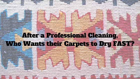 After a Professional Cleaning, Who Wants their Carpets to Dry FAST?