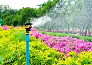 Proper irrigation is key to building sustainable landscape designs