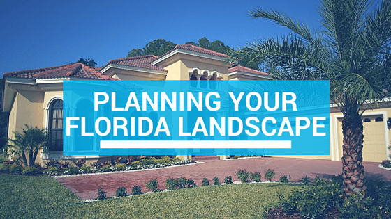 how to plan landscaping in florida
