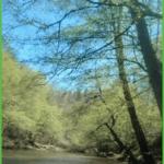 Beautiful Carolina Blue Sky Over the First Broad River