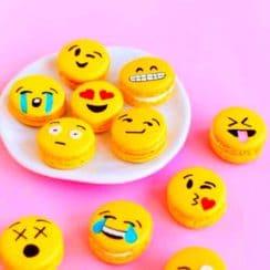 emojis macaron emoticon cookie
