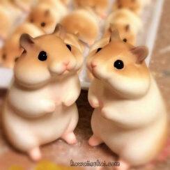Japanese hamster bread