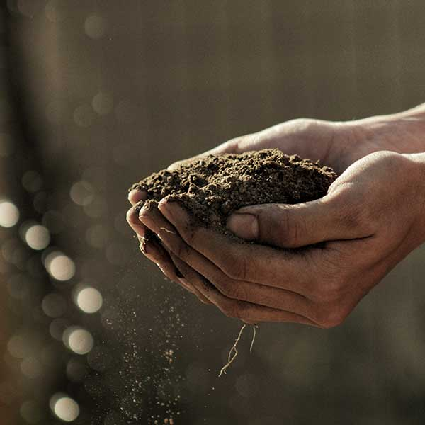 EQUIP OS135 - Advanced Soils