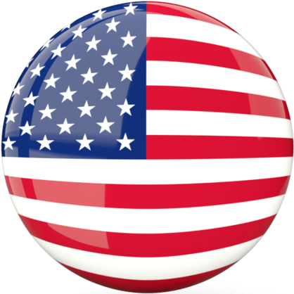 USA flag button for changing the page text to English.