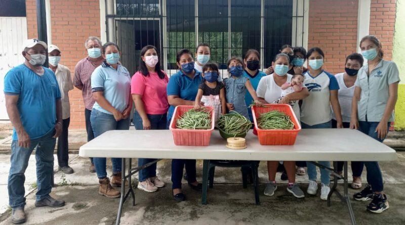 Ayuntamiento de Cosoleacaque lleva a cabo cosecha, fertilización y limpieza de cultivo de ejote