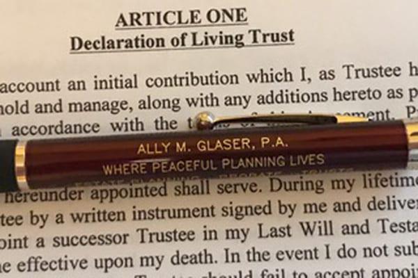 bigger-pen-image-copy-1