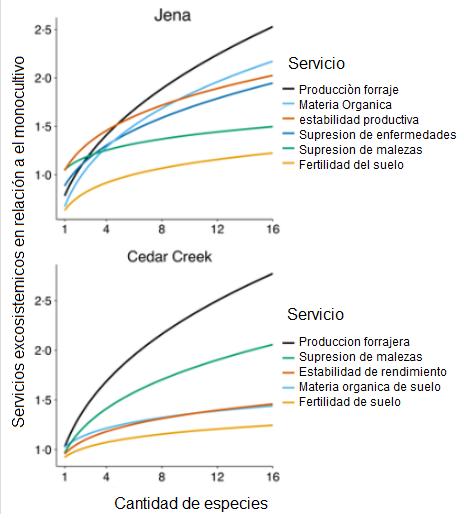 Servicios exosistemicos segun riqueza de especies
