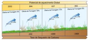 Secuestro de carbono según oferta de forraje ( Nativao)