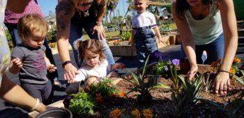 Kids Garden Urban Farming Institute