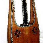 Lyre guitar