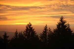 john doan harp Guitar Retreat has scenic views of the Willamette Valley