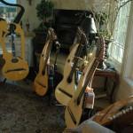 john doan harp guitar retreat student harp guitars