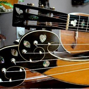 dyer-harp-guitar-cloud-headstock