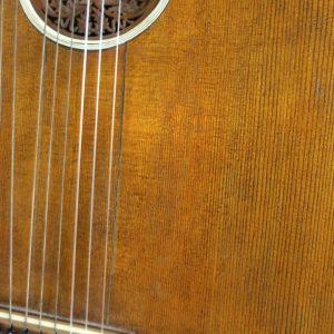 Goltz Lute Guitar 7