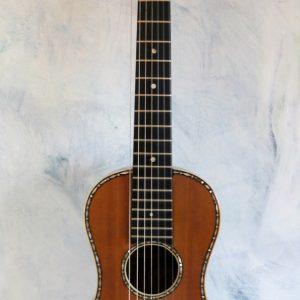 Guitar 7 String 1