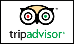 Trip Advisor logo 250x150
