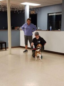 Touch dog training