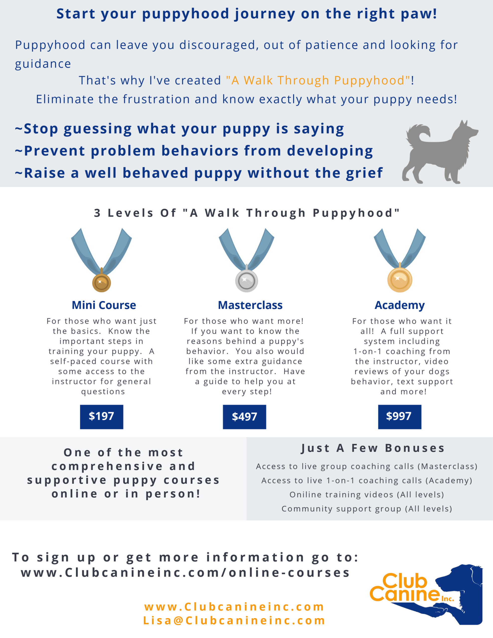 puppy course