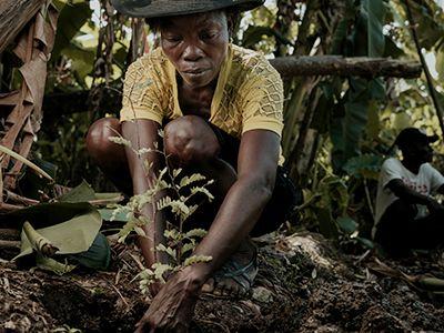 Haiti Economic Development Micro Loans