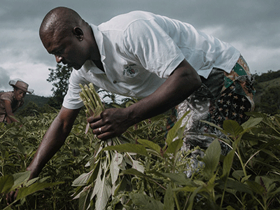 Haiti Infrastructure Projects - Land Conservation | Hope For Haiti