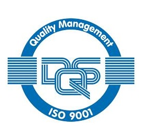 DSQ | Logo