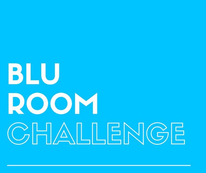Blu Room Challenge Final Recap