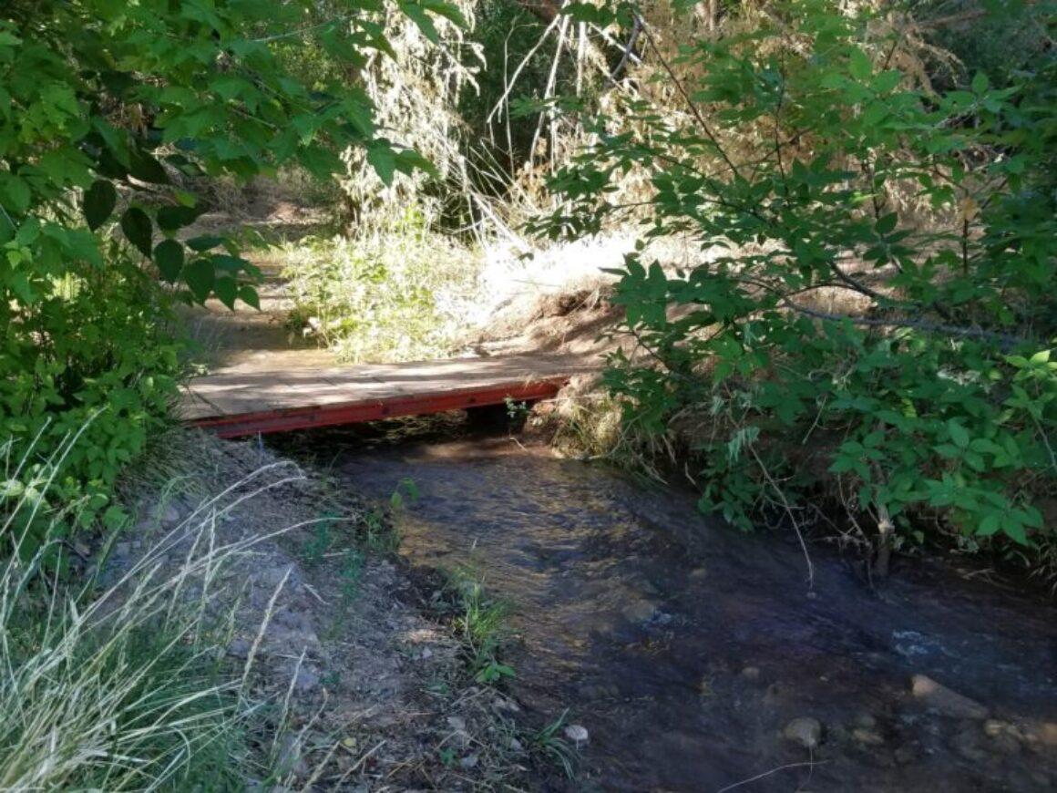20210611_073645 (1) new little bridge in Nature Preserve