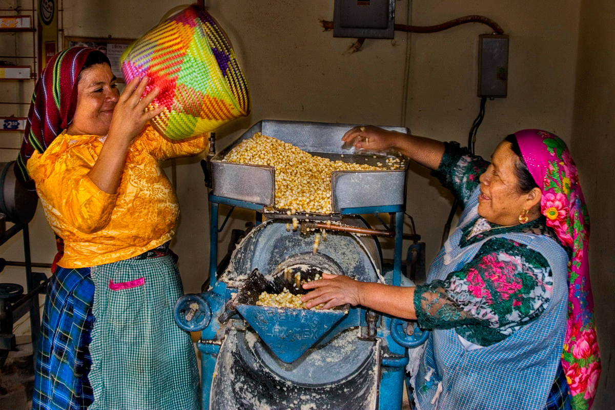 Grinding maize for tortillas _MG_1490