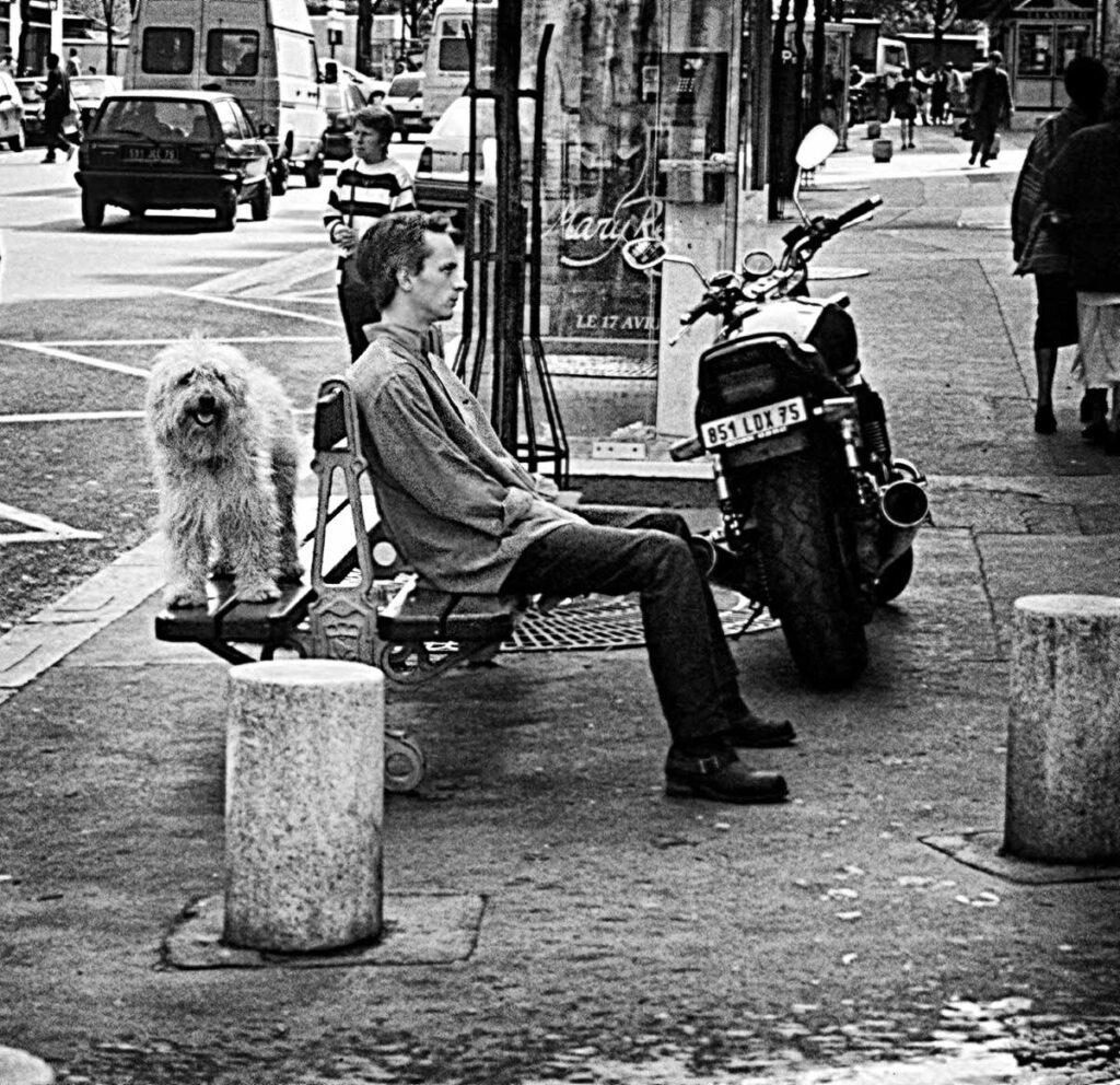 Dog,Bench,Motorcycle 1200