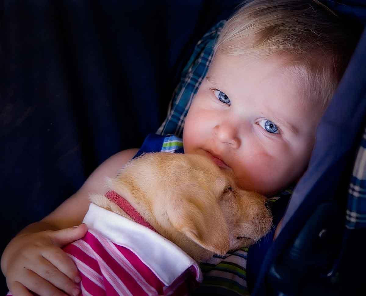 Puppy Love     _MG_7934-1200