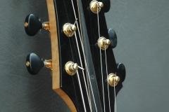 Custom built guitar