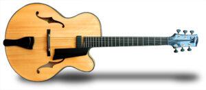 Custom Guitars by the Guitar Doctor
