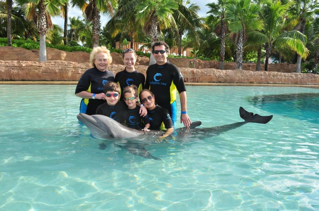 Chris Sendi - Hug a dolphin