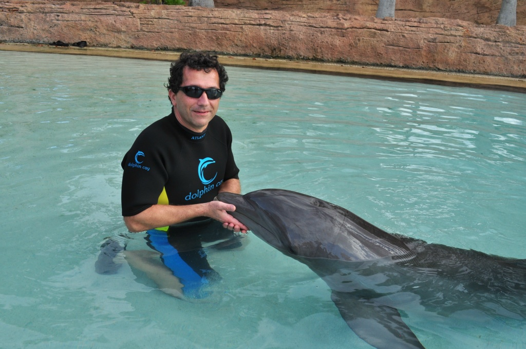 Chris Sendi - Let's kiss a dolphin