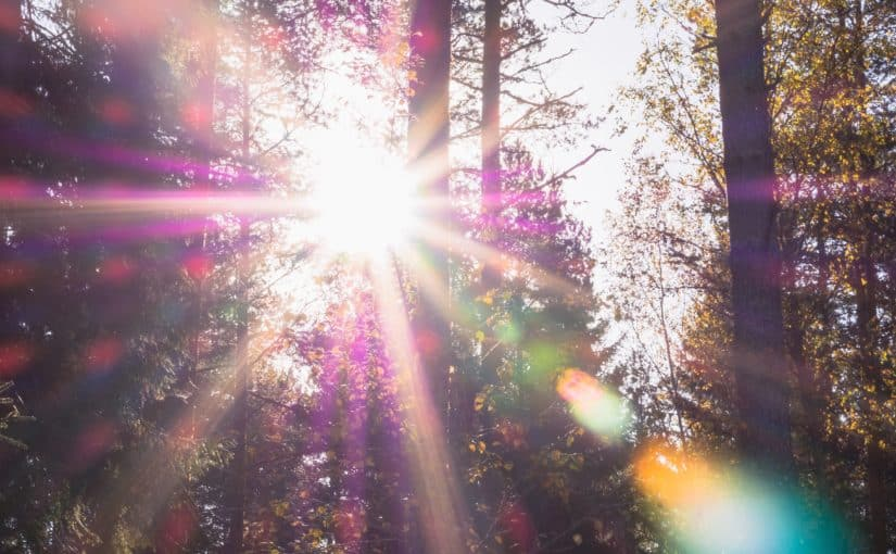 Seasonal Affective Disorder? Light therapy can help!