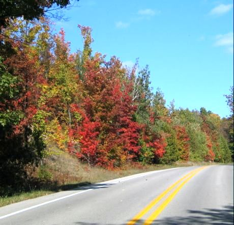 Follow the red border roads on the Leelanau Peninsula near Traverse City because they lead to wineries, cute towns, great overlooks and more fall color