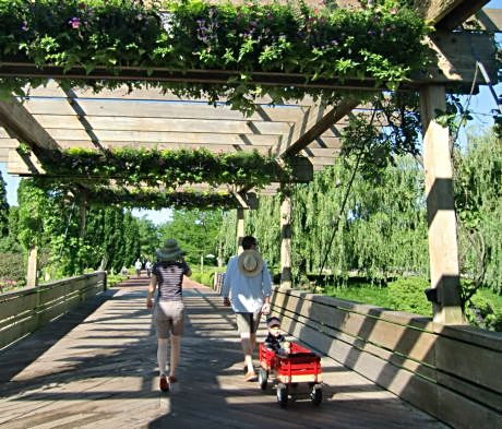 Check out butterflies or stroll the paths at the Chicago Botanic Garden