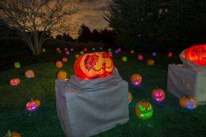 Celebrate Halloween this weekend and next at the Chicago Botanic Garden. CBG Photo
